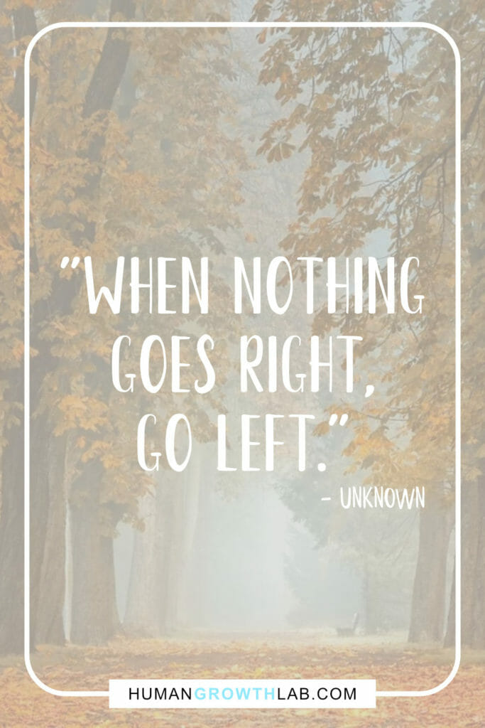 """""""When nothing goes right, go left"""" quote by unknown"""