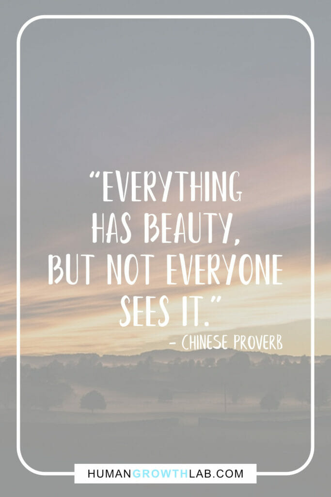 """Chinese proverb on success - """"Everything has beauty, but not everyone sees it."""""""