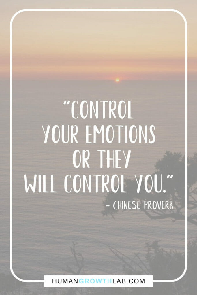 """Chinese saying on success - """"Control your emotions or they will control you."""""""