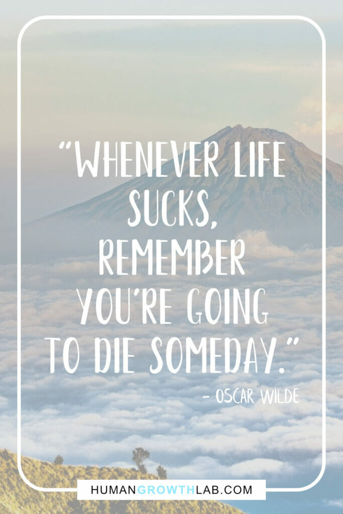 "Oscar Wilde life sucks quote - ""Whenever life 